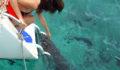 Costa Maya SEAduced Catamaran (28) (Photo 24 of 100 photo(s)).