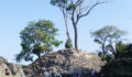Lubaantun-2 (Photo 4 of 16 photo(s)).