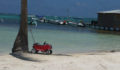 Red Rider stroller awaits while passenger takes a dip in the sea (Photo 42 of 69 photo(s)).