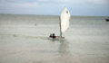 44 Sailing Regatta (1) (Photo 16 of 17 photo(s)).