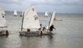 44 Sailing Regatta (Photo 17 of 17 photo(s)).