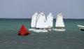 44 Sailing Regatta (16) (Photo 1 of 17 photo(s)).