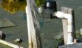 San-Mateo-water-contaminated (Photo 6 of 6 photo(s)).