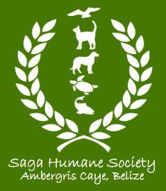 SAGAlogo