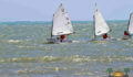baron-bliss-regatta-2 (Photo 4 of 5 photo(s)).