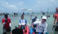 2012 Lagoon Reef Eco-Challenge Kayak Race 100 (Photo 87 of 186 photo(s)).