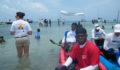 2012 Lagoon Reef Eco-Challenge Kayak Race 102 (Photo 85 of 186 photo(s)).