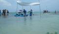 2012 Lagoon Reef Eco-Challenge Kayak Race 105 (Photo 82 of 186 photo(s)).