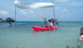 2012 Lagoon Reef Eco-Challenge Kayak Race 142 (Photo 45 of 186 photo(s)).