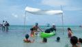 2012 Lagoon Reef Eco-Challenge Kayak Race 144 (Photo 43 of 186 photo(s)).