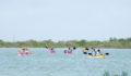 2012 Lagoon Reef Eco-Challenge Kayak Race 27 (Photo 160 of 186 photo(s)).