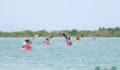 2012 Lagoon Reef Eco-Challenge Kayak Race 29 (Photo 158 of 186 photo(s)).