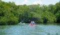 2012 Lagoon Reef Eco-Challenge Kayak Race 31 (Photo 156 of 186 photo(s)).