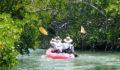 2012 Lagoon Reef Eco-Challenge Kayak Race 32 (Photo 155 of 186 photo(s)).
