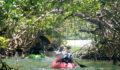 2012 Lagoon Reef Eco-Challenge Kayak Race 34 (Photo 153 of 186 photo(s)).