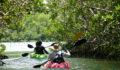 2012 Lagoon Reef Eco-Challenge Kayak Race 35 (Photo 152 of 186 photo(s)).