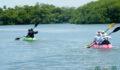 2012 Lagoon Reef Eco-Challenge Kayak Race 37 (Photo 150 of 186 photo(s)).