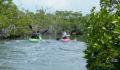 2012 Lagoon Reef Eco-Challenge Kayak Race 40 (Photo 147 of 186 photo(s)).
