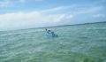 2012 Lagoon Reef Eco-Challenge Kayak Race 44 (Photo 143 of 186 photo(s)).