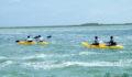 2012 Lagoon Reef Eco-Challenge Kayak Race 46 (Photo 141 of 186 photo(s)).
