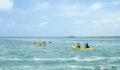 2012 Lagoon Reef Eco-Challenge Kayak Race 47 (Photo 140 of 186 photo(s)).