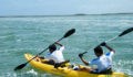 2012 Lagoon Reef Eco-Challenge Kayak Race 50 (Photo 137 of 186 photo(s)).