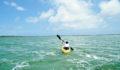 2012 Lagoon Reef Eco-Challenge Kayak Race 52 (Photo 135 of 186 photo(s)).