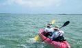 2012 Lagoon Reef Eco-Challenge Kayak Race 53 (Photo 134 of 186 photo(s)).