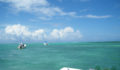 2012 Lagoon Reef Eco-Challenge Kayak Race 58 (Photo 129 of 186 photo(s)).
