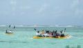 2012 Lagoon Reef Eco-Challenge Kayak Race 73 (Photo 114 of 186 photo(s)).