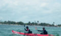 2012 Lagoon Reef Eco-Challenge Kayak Race 74 (Photo 113 of 186 photo(s)).