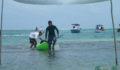 2012 Lagoon Reef Eco-Challenge Kayak Race 82 (Photo 105 of 186 photo(s)).
