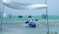 2012 Lagoon Reef Eco-Challenge Kayak Race 90 (Photo 97 of 186 photo(s)).