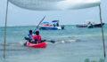 2012 Lagoon Reef Eco-Challenge Kayak Race 93 (Photo 94 of 186 photo(s)).