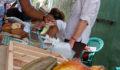 Toledo Cacao Festival 2012 96 (Photo 30 of 244 photo(s)).