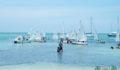 Belize Guatemala Sailing Regatta 2 (Photo 11 of 11 photo(s)).