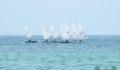 Belize Guatemala Sailing Regatta 7 (Photo 8 of 11 photo(s)).