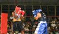 Boxing Belize vs Guatemala 28 (Photo 23 of 47 photo(s)).
