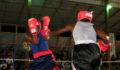 Boxing Belize vs Guatemala 9 (Photo 6 of 47 photo(s)).