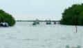 Eco Pro Kayak Race 2012 21 (Photo 6 of 53 photo(s)).
