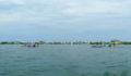 Eco Pro Kayak Race 2012 24 (Photo 9 of 53 photo(s)).