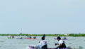 Eco Pro Kayak Race 2012 35 (Photo 20 of 53 photo(s)).