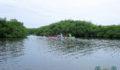 Eco Pro Kayak Race 2012 36 (Photo 21 of 53 photo(s)).
