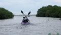 Eco Pro Kayak Race 2012 37 (Photo 22 of 53 photo(s)).