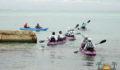 Eco Pro Kayak Race 2012 40 (Photo 24 of 53 photo(s)).