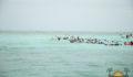 Eco Pro Kayak Race 2012 51 (Photo 31 of 53 photo(s)).