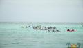 Eco Pro Kayak Race 2012 52 (Photo 32 of 53 photo(s)).