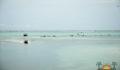 Eco Pro Kayak Race 2012 58 (Photo 36 of 53 photo(s)).
