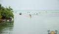 Eco Pro Kayak Race 2012 62 (Photo 39 of 53 photo(s)).