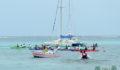 Eco Pro Kayak Race 2012 7 (Photo 3 of 53 photo(s)).